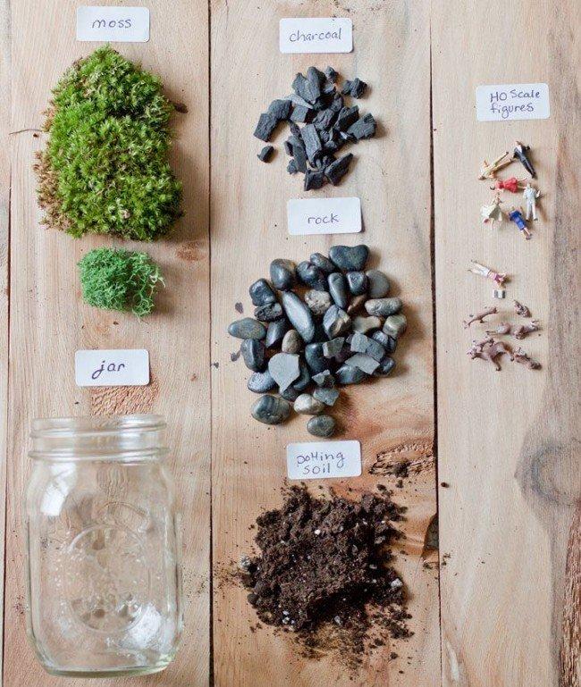 Особенности создания флорариума