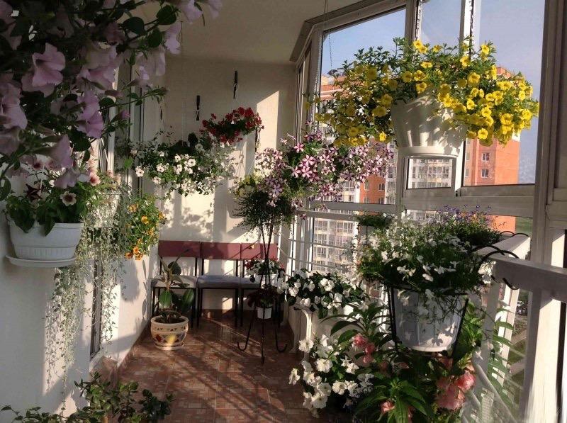 Декор балкона - делаем райский сад