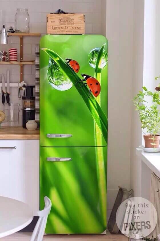 Обновляем холодильник своими руками 985